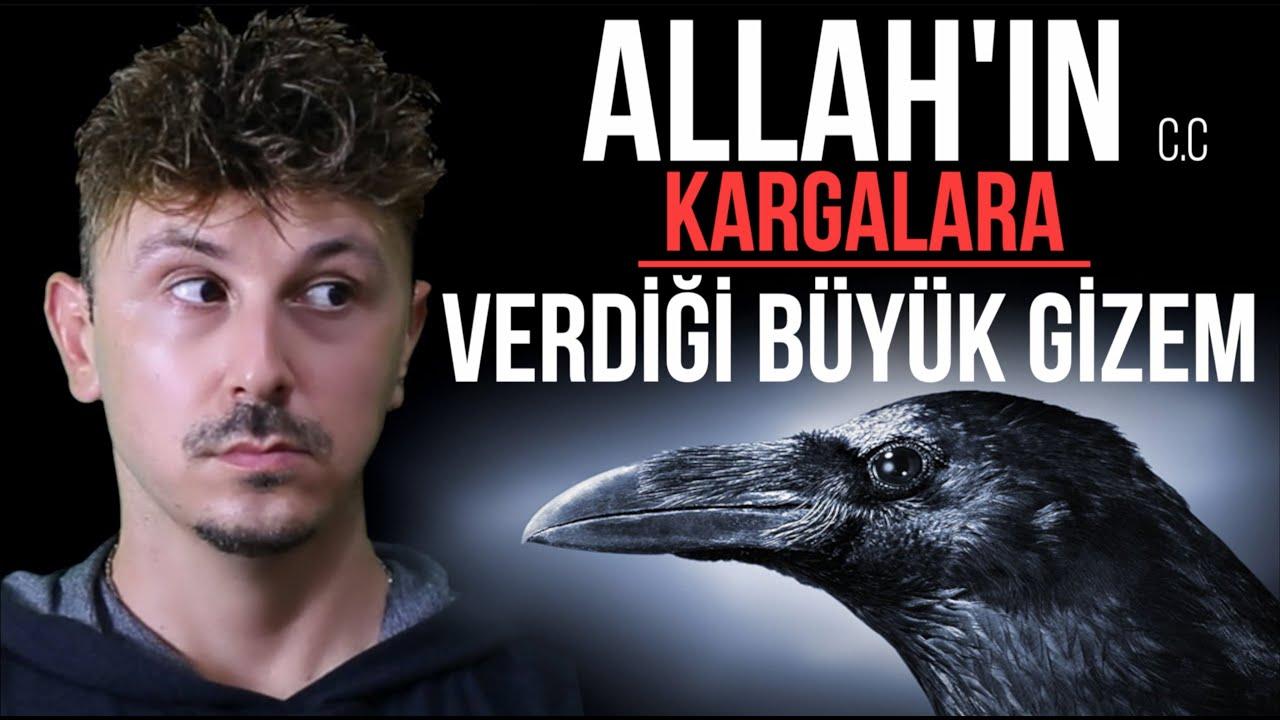 Download SUBHANALLAH! ALLAH'IN KARGALARA VERDİĞİ BÜYÜK GİZEM KEŞFEDİLDİ