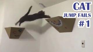 Cat jump fails #1 2020