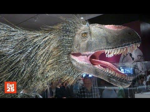 25 Most BIZARRE Dinosaurs Ever