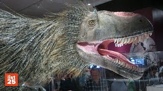 25 Most BIZARRE Dinosaurs Ever