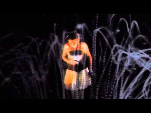 Within Temptation - Forgiven (live Koninklijk Theater Carré Amsterdam 02/03/15)