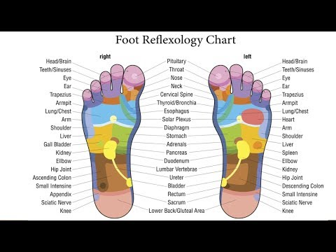 Foot Reflexology - What is Foot Reflexology & What is it Good For - Reflexology Massage Techniques