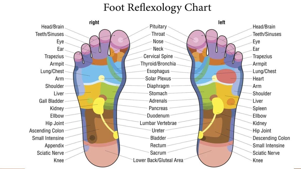 foot reflexology what is foot reflexology reflexology massagefootmassage foot feet
