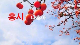 가수 유이성 Live노래교실-홍시(나훈아)
