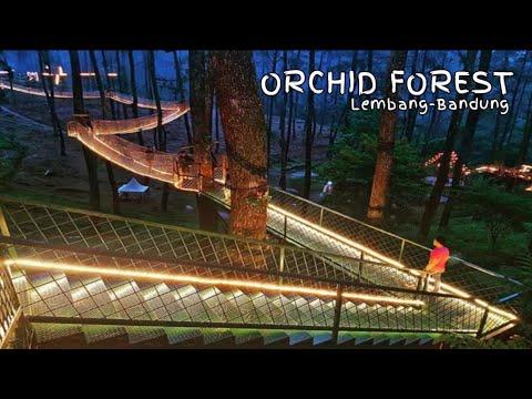 wisata-orchid-forest-cikole-lembang-bandung-jawa-barat,-destinasi-wisata-kekinian