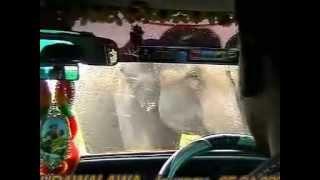 Udawalawa elephant attack by Lalith Bamunusinghe-sri lanka