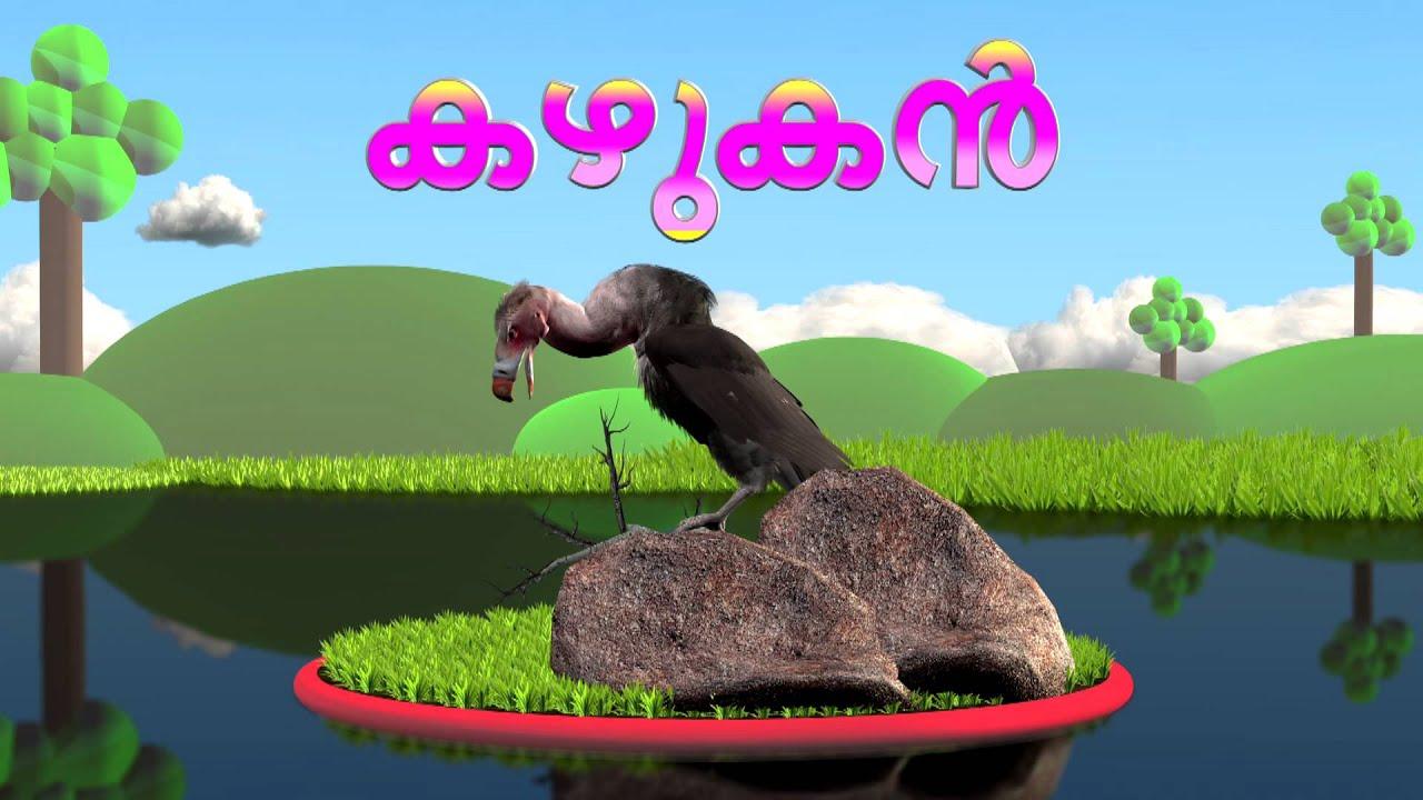 പക ഷ കള Birds Learn Birds Name In Malayalam Edutainment Animation Video For Kids Youtube