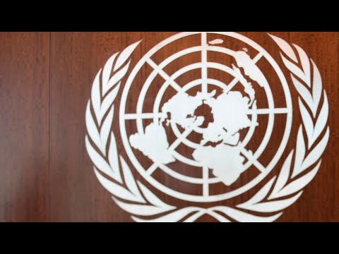 World Health Organisation And United Nations 'as Useless As Each Other'