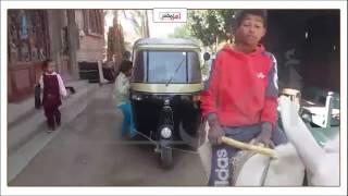 بالفيديو.. صاحب 'توك توك' بسوهاج يستعين بـ'حمار' لإصلاحه
