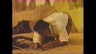 1988年 武田薬品工業 アリナミンA CM「西オーストラリア・ピナクルズ」 音楽 樋口康雄 出演 村上弘明.