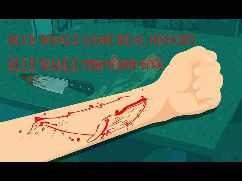 Blue Whale Game Real History | বুল হোয়েল গেমের সত্যিকার কাহিনি
