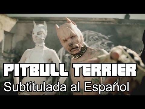 Pitbull Terrier - Die Antwoord - Subtitulada