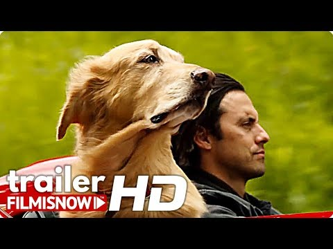 the-art-of-racing-in-the-rain-trailer-(2019)-|-kevin-costner-dog-movie