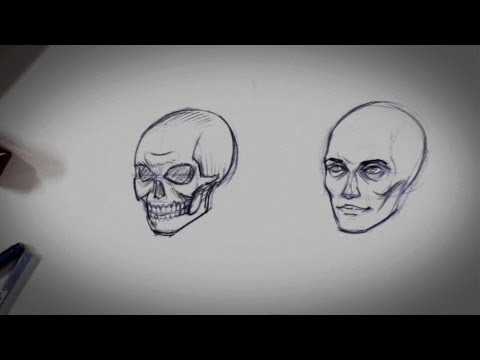 Cách Vẽ Khuôn Mặt