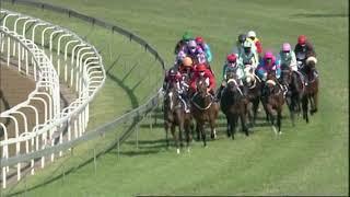 Vidéo de la course PMU PRIX KZN YEARLING SALE MILLION