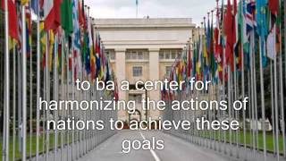 United Nations - It