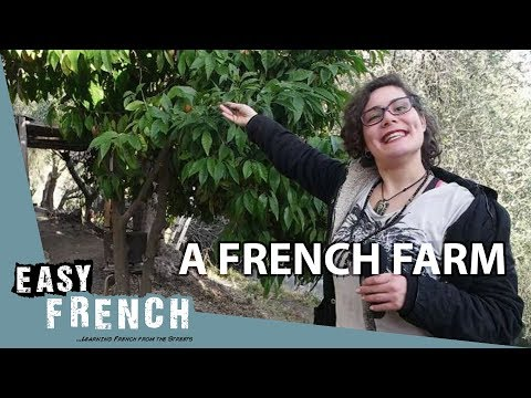 A French Farm (1) | Super Easy French 20