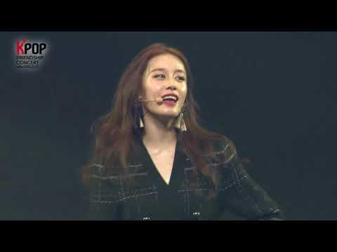 2017 Korea & Vietnam Friendship KPOP Concert [T-ARA - LOVEY DOVEY]