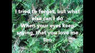 Don't let me cross over Love's Cheating Line by Jim Reeves and Deborah Allen with lyrics