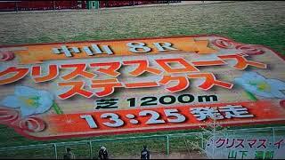 2017中山8R本馬場入場小林アナ名実況