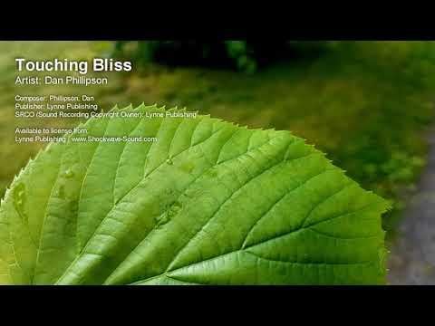 Touching Bliss  Dan Phillipson Lynne Publishing