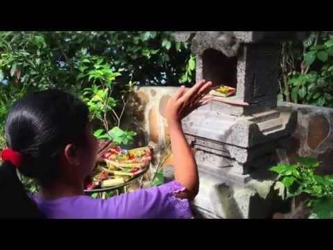 Shambala Oceanside Retreat and Spa - Bali