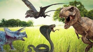 МИР ДИНОЗАВРОВ. Истории про хищных и травоядных динозавров в одном видео. СБОРНИК