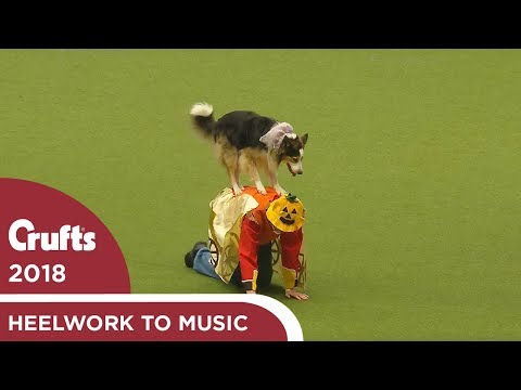 Freestyle Heelwork to Music Competition Part 3 | Crufts 2018
