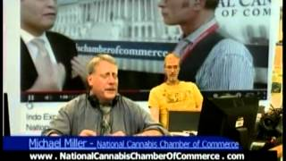 Michael Miller CEO, National Cannabis Chamber of Commerce, AllDayLive, Will P. Wilson, MediaCific,
