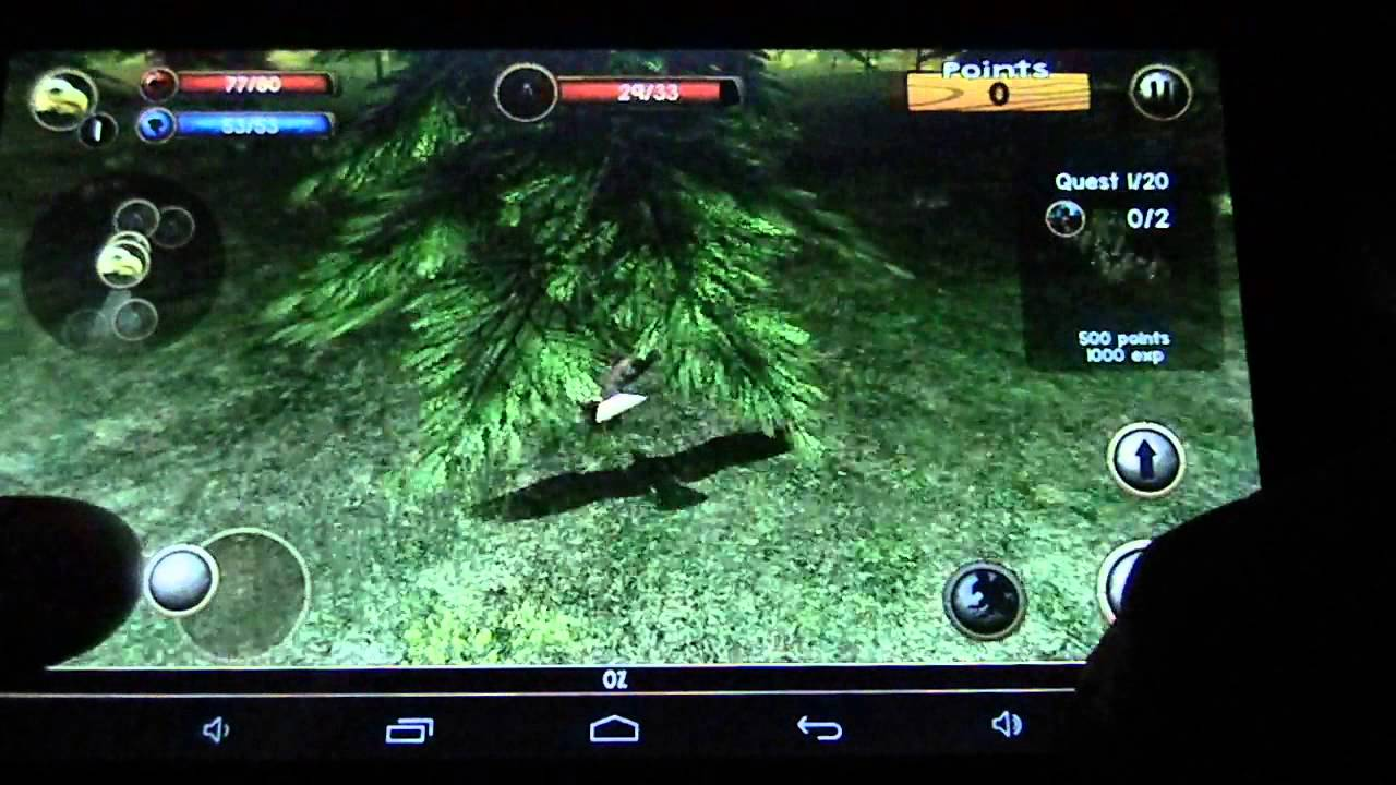 Wild Eagle Simulator Frei wie ein Adler - YouTube