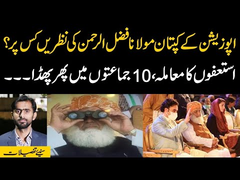 Siddique Jan: Maulana Fazl ur Rehman looking towards whom? Who decides the resignations? Details by Siddique Jaan