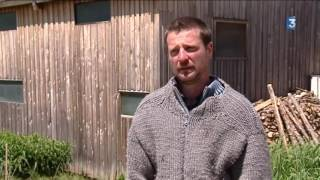 Un de Baumugnes: Une ferme laitiere bio en remède à la désertification