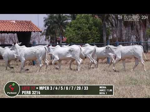 LOTE 17   PERB 3214, MPER 3,5,6,33,4,7,20