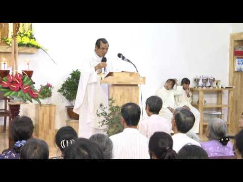 Bài giảng Lòng Thương Xót Chúa ngày 15/2/2017 - Cha Giuse Trần Đình Long
