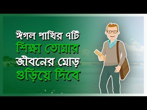 ঈগল পাখির ৭টি  শিক্ষা তোমার জীবনের মোর ঘুড়িয়ে দিবে    Bangla Motivational Video  Bangla Motivation