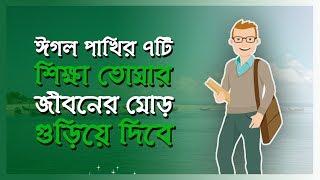 ঈগল পাখির ৭টি  শিক্ষা তোমার জীবনের মোর ঘুড়িয়ে দিবে || Bangla Motivational Video||Bangla Motivation