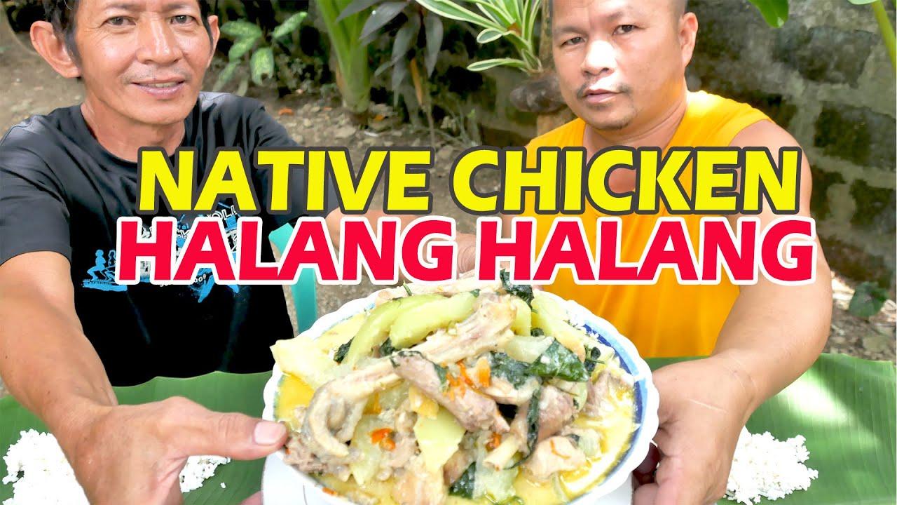 Download CHICKEN HALANG HALANG
