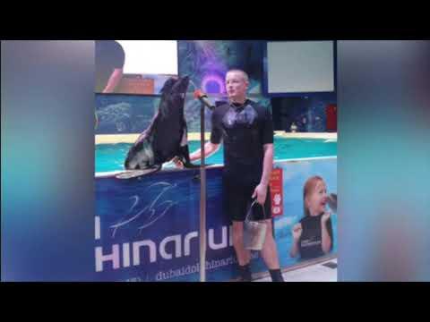 BoodyMaster visiting Dubai Dolphinarium – Dolphin & Seal Show