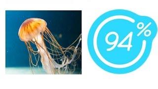 Игра 94% Картинка Медуза | Ответы на 12 уровень игры.