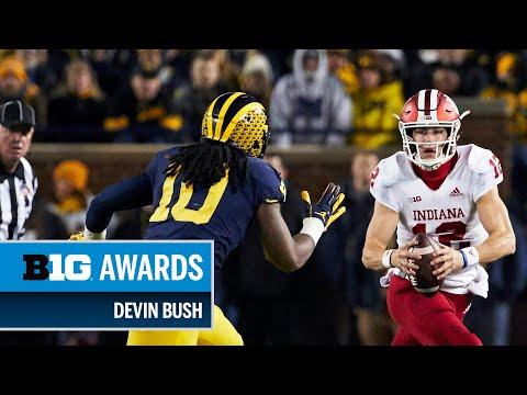 2018 Big Ten Defensive POTY & Linebacker of the Year: Michigan's Devin Bush | Big Ten Football