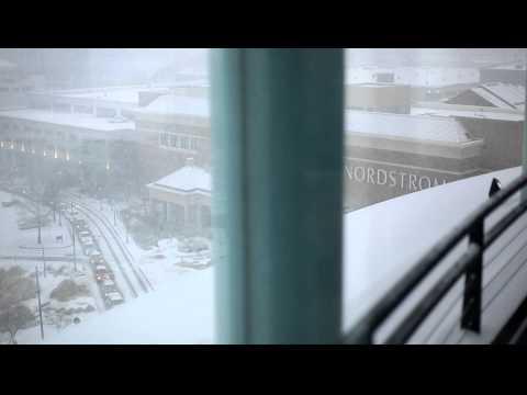 Snow- Downtown Norfolk, VA