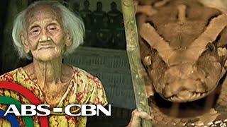 UKG: Lolang may kambal na ahas umano, panoorin