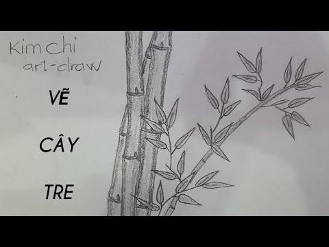 Cách Vẽ Cây Tre đơn giản bằng bút chì – How to Draw Bamboo with pencil