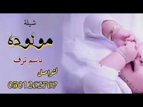 شيلة بشارة مولوده باسم ترف Youtube