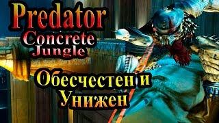 Прохождение Хищник Бетонные Джунгли (Predator Concrete Jungle) - часть 1 - Обесчестен и Унижен