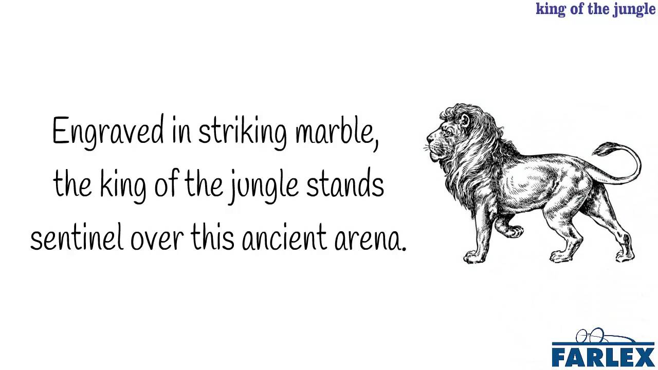 King of the jungle - Idioms by The Free Dictionary