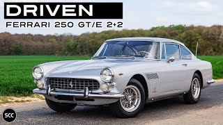 FERRARI 250 GTE (GT/E) 2+2 1964 #4371 - V12 ENGINE SOUND ONLY! | SCC TV