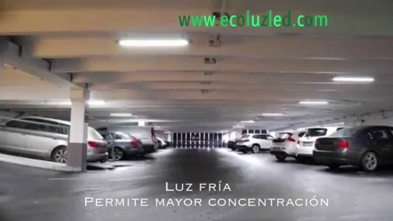 Tonos de luz LED, Luz Calida LED, luz Natural LED o luz Fria LED ...