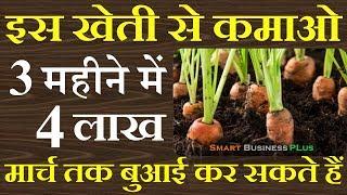 गाजर की खेती से 3 महीने में कमाओ 4 लाख रूपए || carrots farming || Smart Business Plus