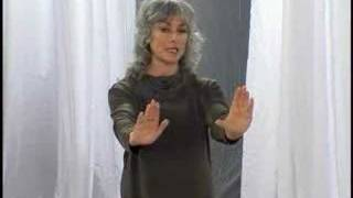 Tai Chi for Enlighteners ~ Sample Lesson 1